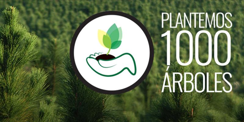 Cómo ser parte de Plantemos 1000 Árboles