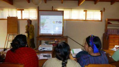 fundación tradiciones mayas voluntariado