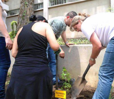 diplomado jardinizacion landivar