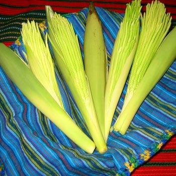 receta-pacayas-envueltas-guatemala