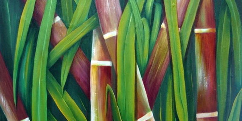 Leyenda de los Tzipitíos de la caña de azúcar