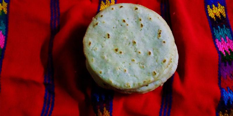 Cómo hacer tortillas de maíz guatemaltecas