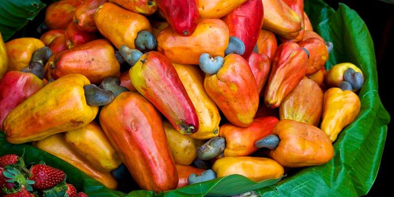Image Result For Receta De Cocina Guatemalteca