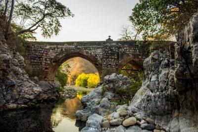 puente de barranquilla sanarate