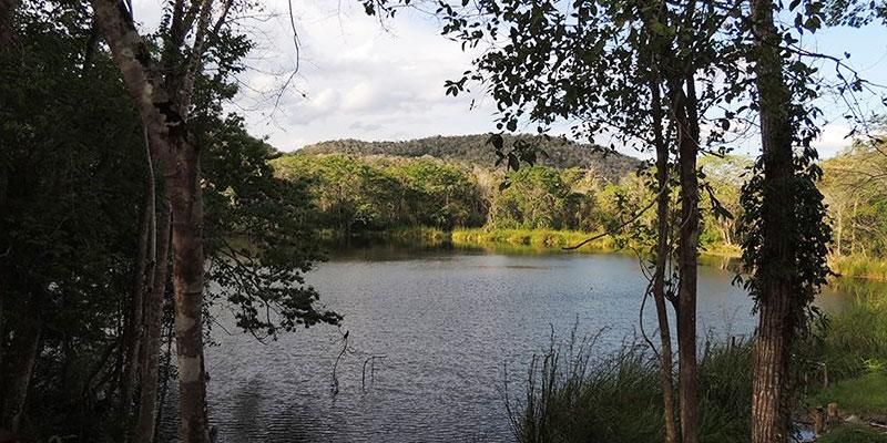Biotopo Naachtún Dos Lagunas Petén