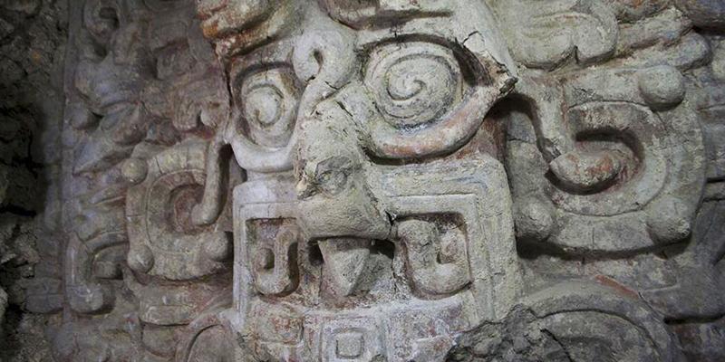 Biotopo San Miguel la Palotada El Zotz, Petén