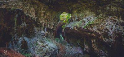 cuevas de candelaria haniel lopez