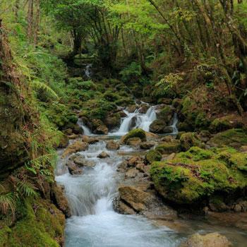 rio grutas del rey marcos