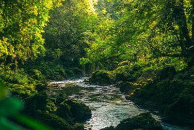 rio sachicha haniel lopez