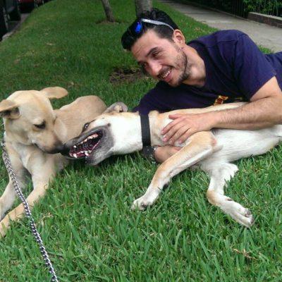 voluntario adopta una mascota