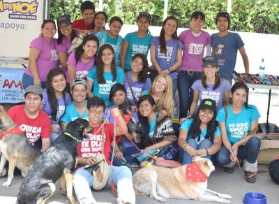 voluntarios ama