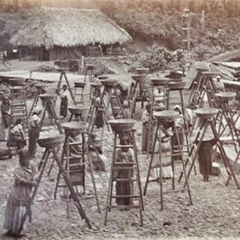 Historia del cafe de Guatemala