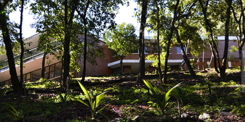 Proceso de admisión en la Universidad Rural de Guatemala
