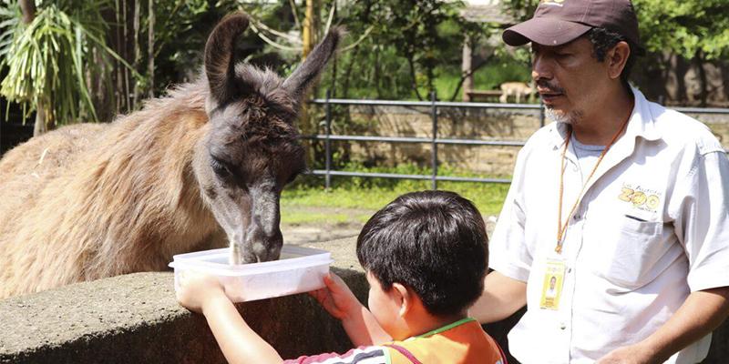 Horarios y precios del zoológico La Aurora