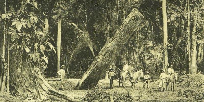 Historia de las Ruinas de Quiriguá, Izabal