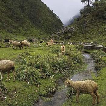 La sierra de los Cuchumatanes en Guatemala