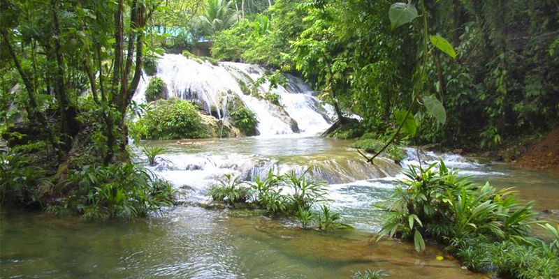 Reserva protectora de manantiales Cerro San Gil, Izabal