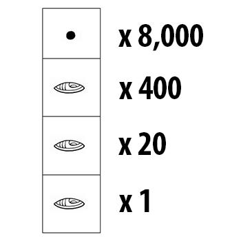 Los números mayas en Guatemala8