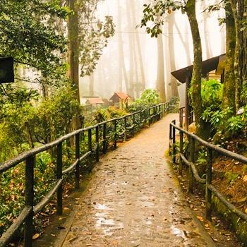 senderos-alux-parque-ecologico-sacatepequez-san-lucas-guatemala (1)