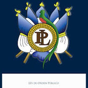 estado-calamidad-publica-guatemala-ley-orden-publico-pdf