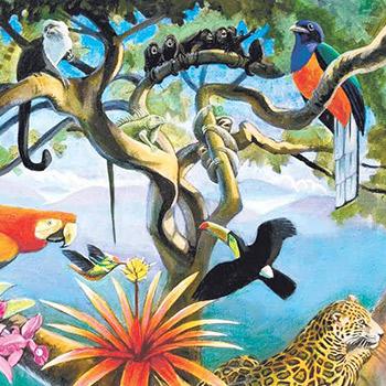 vida-silvestre-en-guatemala-animales