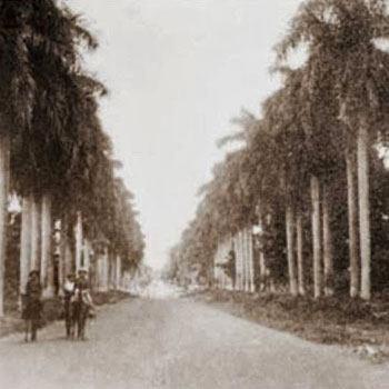 historia-calzada-las-palmas-retalhuleu-carretera-capital-del-mundo-departamento