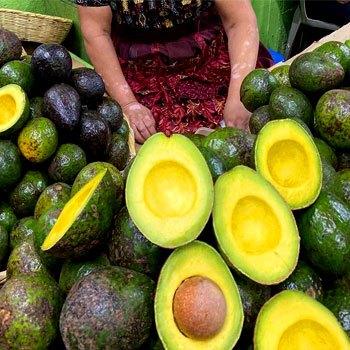 receta-hacer-salsa-de-aguacate-estilo-guatemalteco-venta-comercio-exportacion