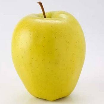 receta-licuado-manzana-colada-estilo-guatemalteco-gloria-mundi-tipo