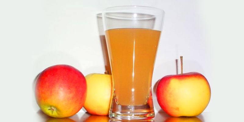 receta-para-hacer-licuado-de-manzana-cocida-al-estilo-guatemalteco