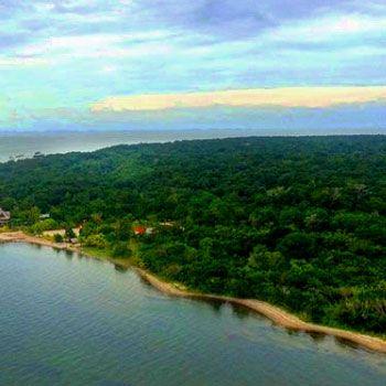 refugio-vida-silvestre-punta-de-manabique-puerto-barrios-izabal-guatemala-bosques-manglares