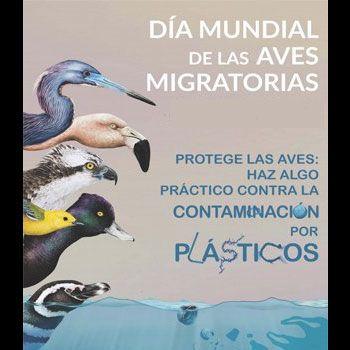 aves-migratorias-en-guatemala-dia-mundial-onu