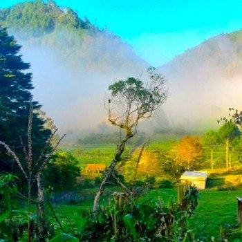 climas-en-guatemala-bosque-nuboso-baja-verapaz