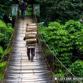 municipio-el-palmar-quetzaltenango-poblacion