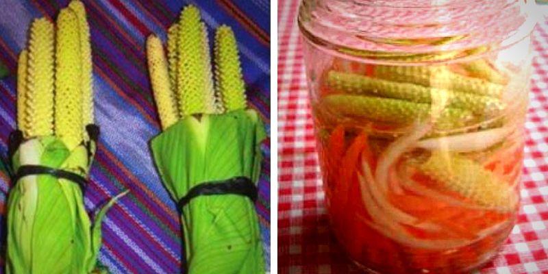 receta-guatemalteca-hacer-curtido-gusnay