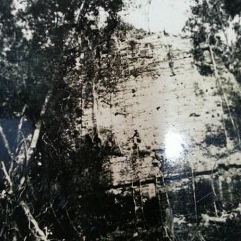 templo-vi-templo-inscripciones-tikal-peten-descubrimiento