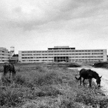 historia-psicologia-guatemala-hospital-roosevelt