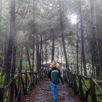 tipos-bosques-guatemala-nubosos