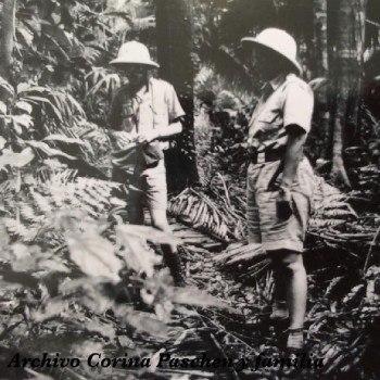 historia-arqueologia-guatemala-arqueologos-investigaciones-peten