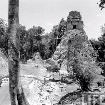historia-arqueologia-guatemala-descubrimiento-tikal