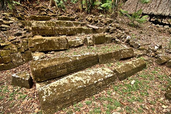 Escalinata jeroglífica de Dos Pilas, Sayaxché, Petén