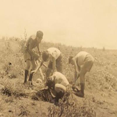 Fotos antiguas scout niños en scouting - 100 años