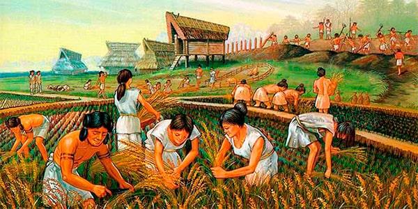 Agricultura en Guatemala - Foto Aprendamos de culturas