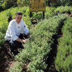 Biografía de Mario Campollo, chef guatemalteco