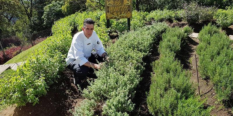 Biografía de Mario Campollo, chef guatemalteco - Foto Chef Mario Campollo Sarti