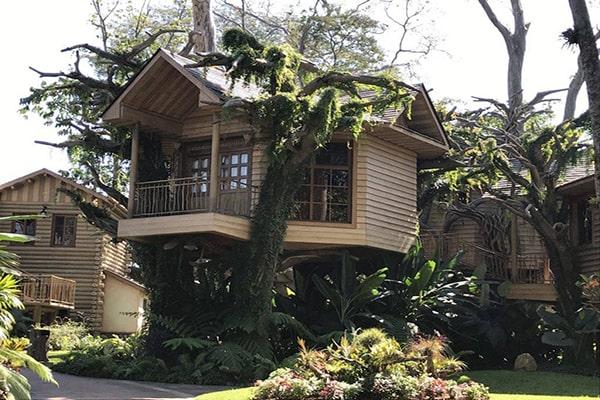 Cómo hacer reservaciones en Hostal Aldea de la Selva, casa del árbol - Foto Hostal Aldea de la Selva