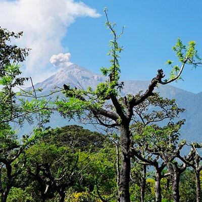 Municipio de San Juan Alotenango, volcán de fuego - instagram - @fernanda.arroyom