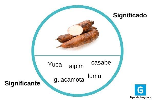 Significado de la palabra yuca en guatemala - Foto Guatemala . com
