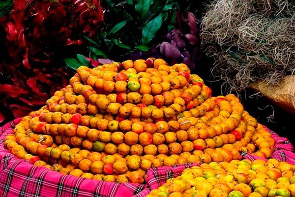 Tradiciones guatemaltecas en Navidad - Foto Gua14-90