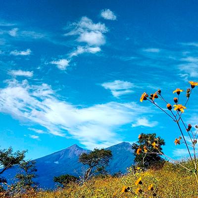 Descripción de la foto - Vista de los volcanes, el cielo, las flores y árboles en las cercanías de San Antonio Aguas Calientes - crédito de la foto - @elyguachin - Instagram