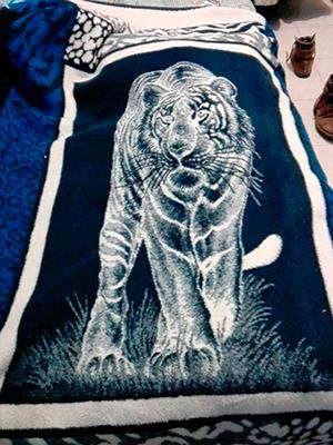 Descripción de foto - Cobertor de tigre caminando, con fondo negro y piel blanca. - Crédito de foto - @GalanConTraje- Twitter